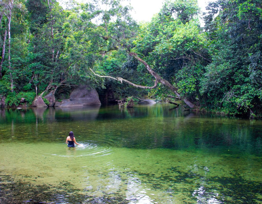 french tours from cairns wooroonooransafaris
