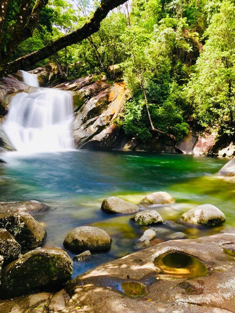 josephine falls wooroonooran safaris