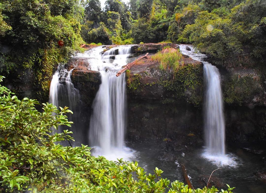tchupala falls wooroonooran national park