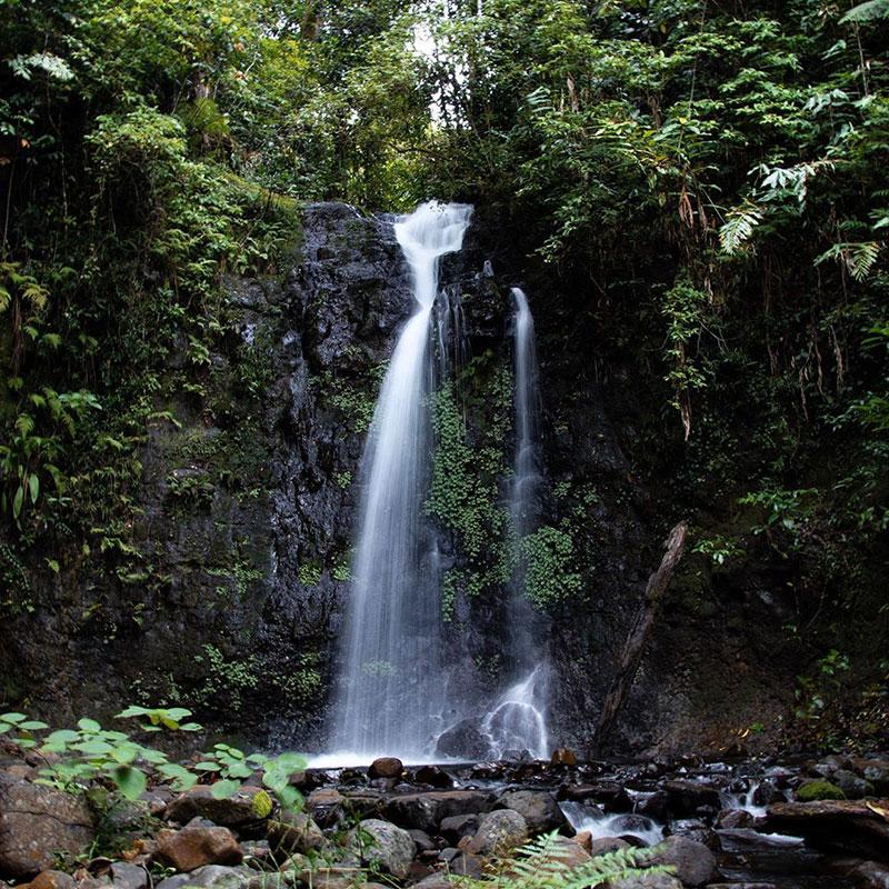 silver creek falls wooroonooran national park
