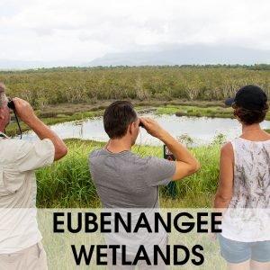 wooroonooran safaris eubenangee wetlands