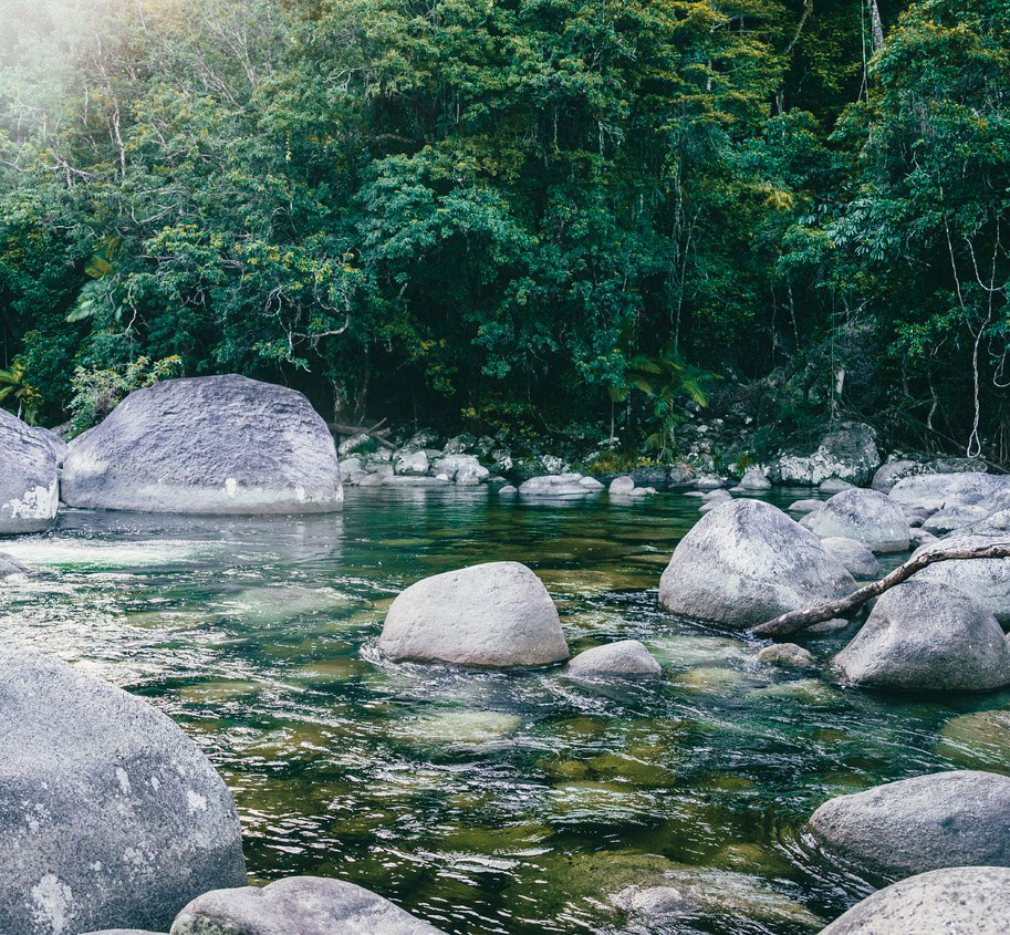 mossman gorge private charter from cairns