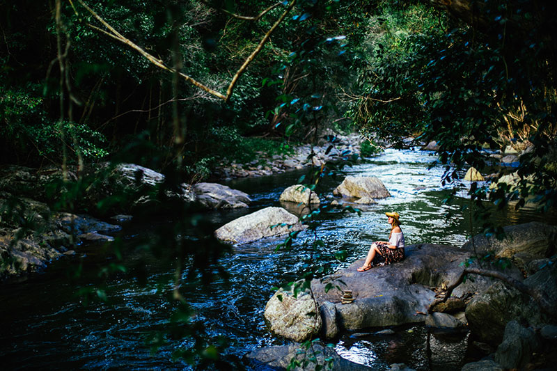 cairns private charter tours to port douglas and mossman gorge
